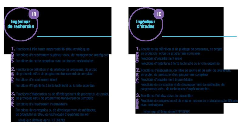 RIFSEEP : cartographie détaillée des groupes fonctions IR et IE